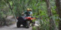 Quadriciclo na Praia do Forte
