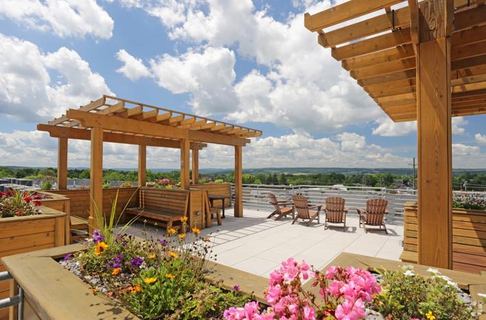 Breathtaking Rooftop Garden
