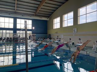 Gran día de natación en Benimamet
