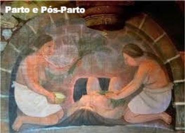 Em vários estados do México e América Central, as parteiras tradicionais para mulheres grávidas usado como um curativo e preventivo de plantas medicinais. Na mulher grávida o útero se expande, o que facilita o trabalho de parto, as mulheres no pós-parto são banhadas por várias vezes para entrar na matriz e remover o acúmulo de ar que teve no parto.
