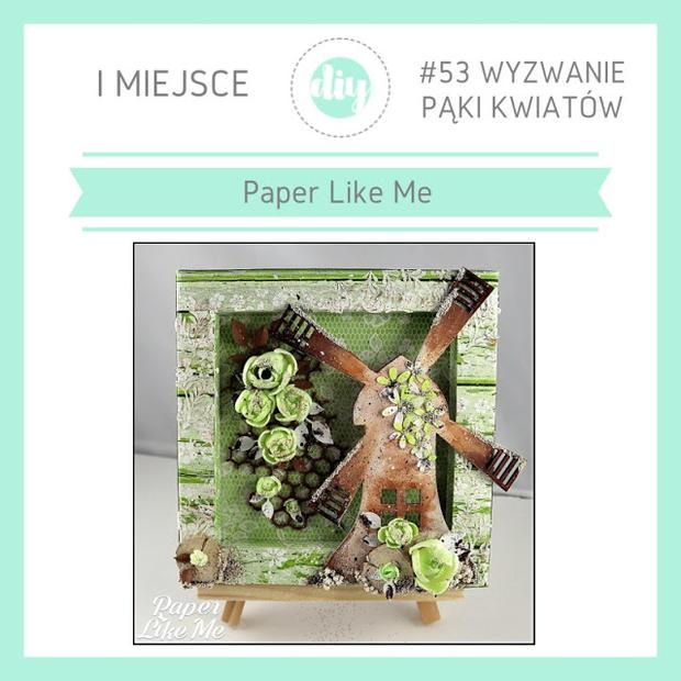 1 miejsce_Paper Like Me.JPG
