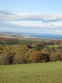 Moray view