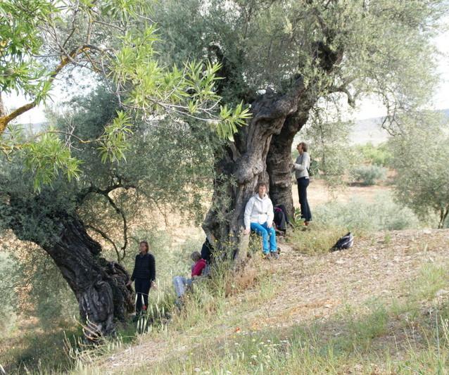 Kreta_en_Andalusië_(31)