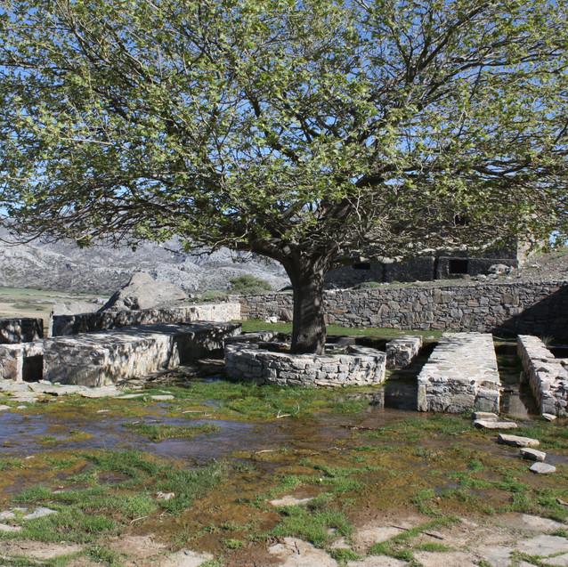 Kreta_en_Andalusië_(99)