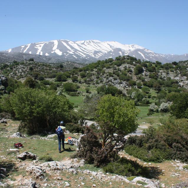Kreta_en_Andalusië_(96)