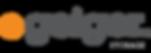 geiger-logos.png