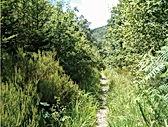 2rtp création de sentiers de randonnée