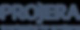 Projera Text Yeni Logo - Nubuk Mavi - Mo