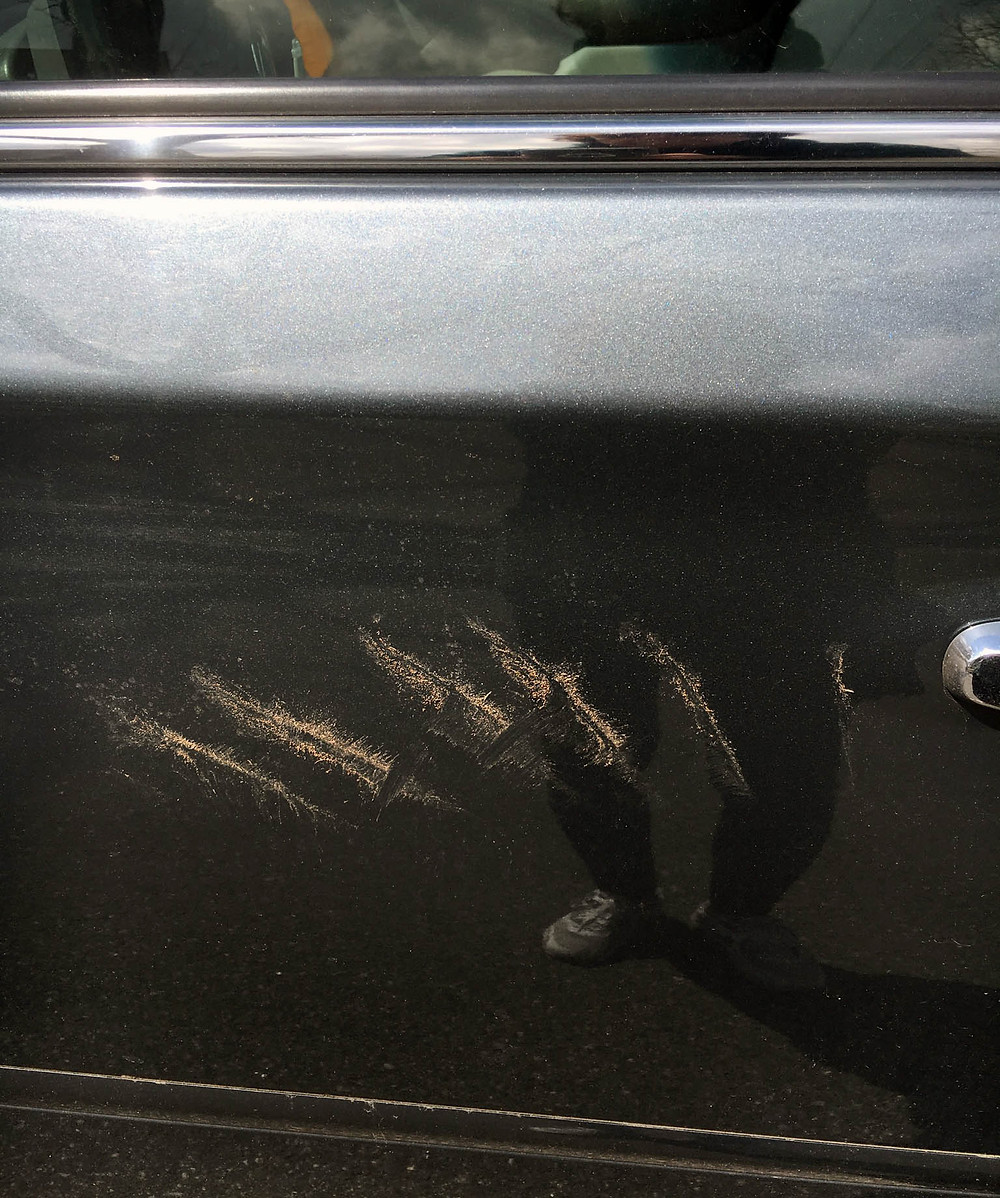 Turkey Trot, turkey scratches on car door