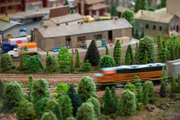 Great Train Show