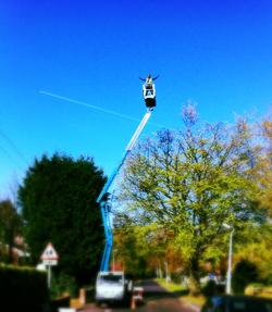 Tree Surgeon Bedfordshire