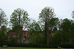 Bedfordshire Reduction