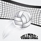 Net and Ball.jpg
