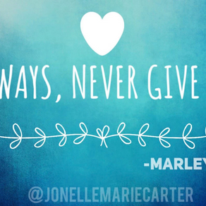 Always Never Give Up