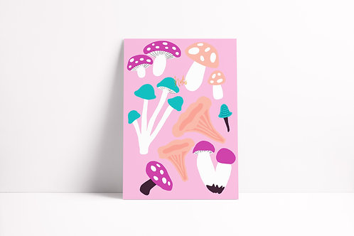 Shrooms Notebook