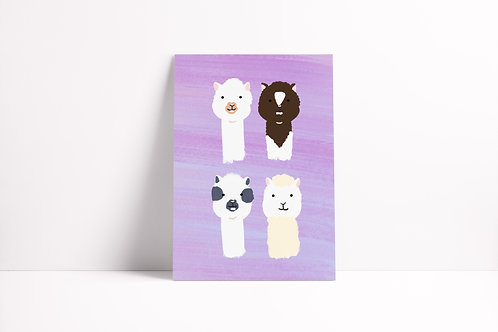 Llama Notebook