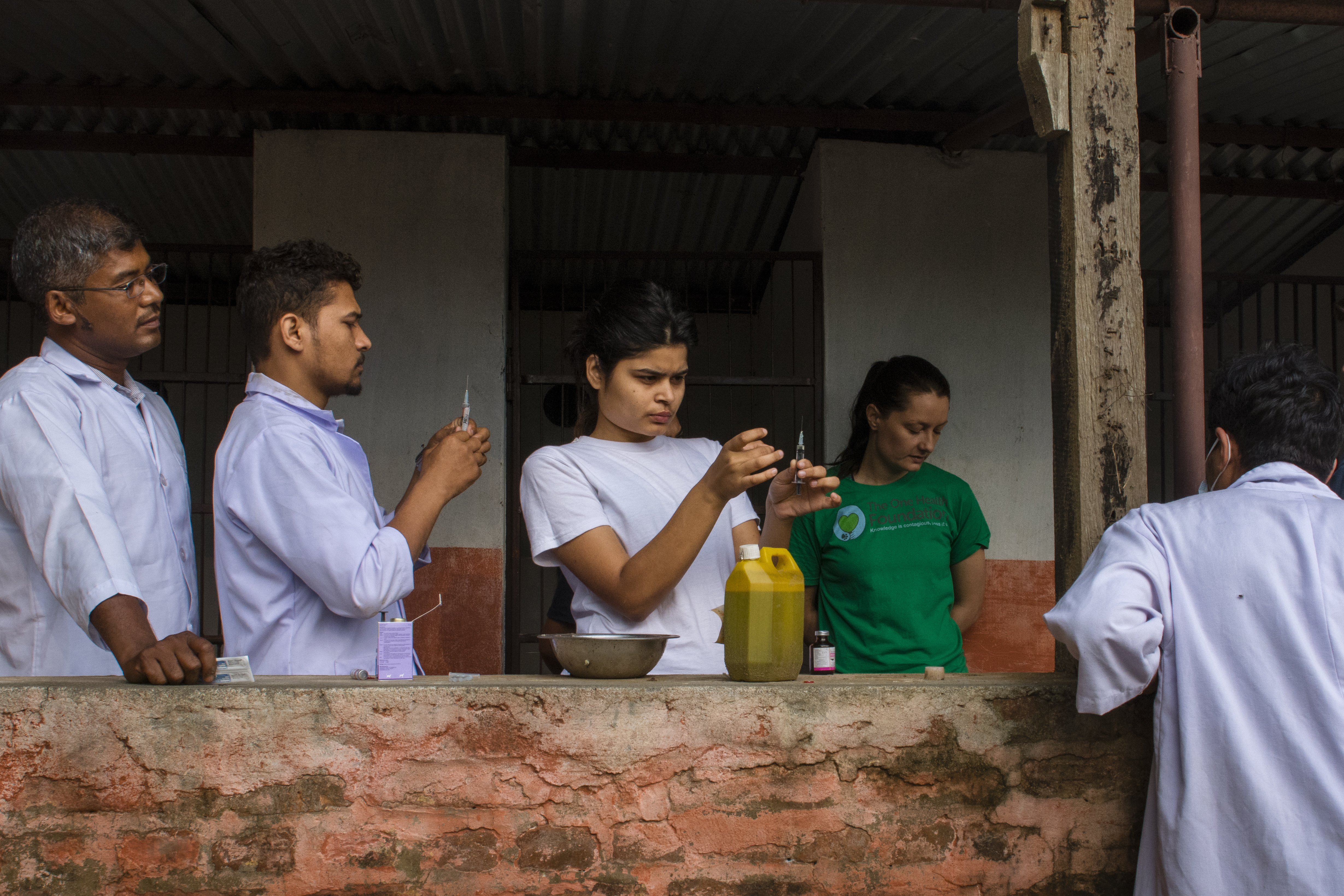 Chitwan (5 of 119)