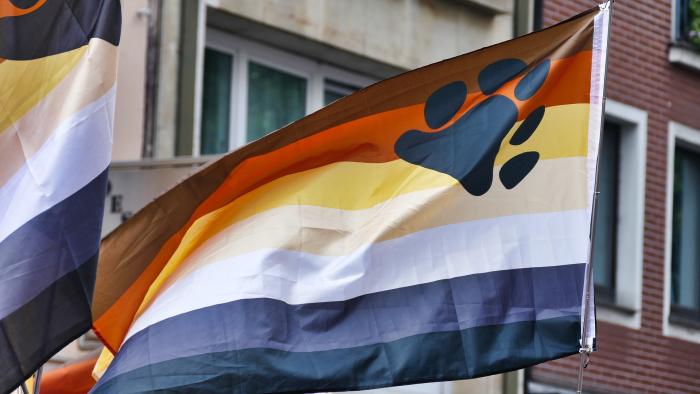דגל דובים גאים