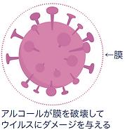envelope-virus.PNG