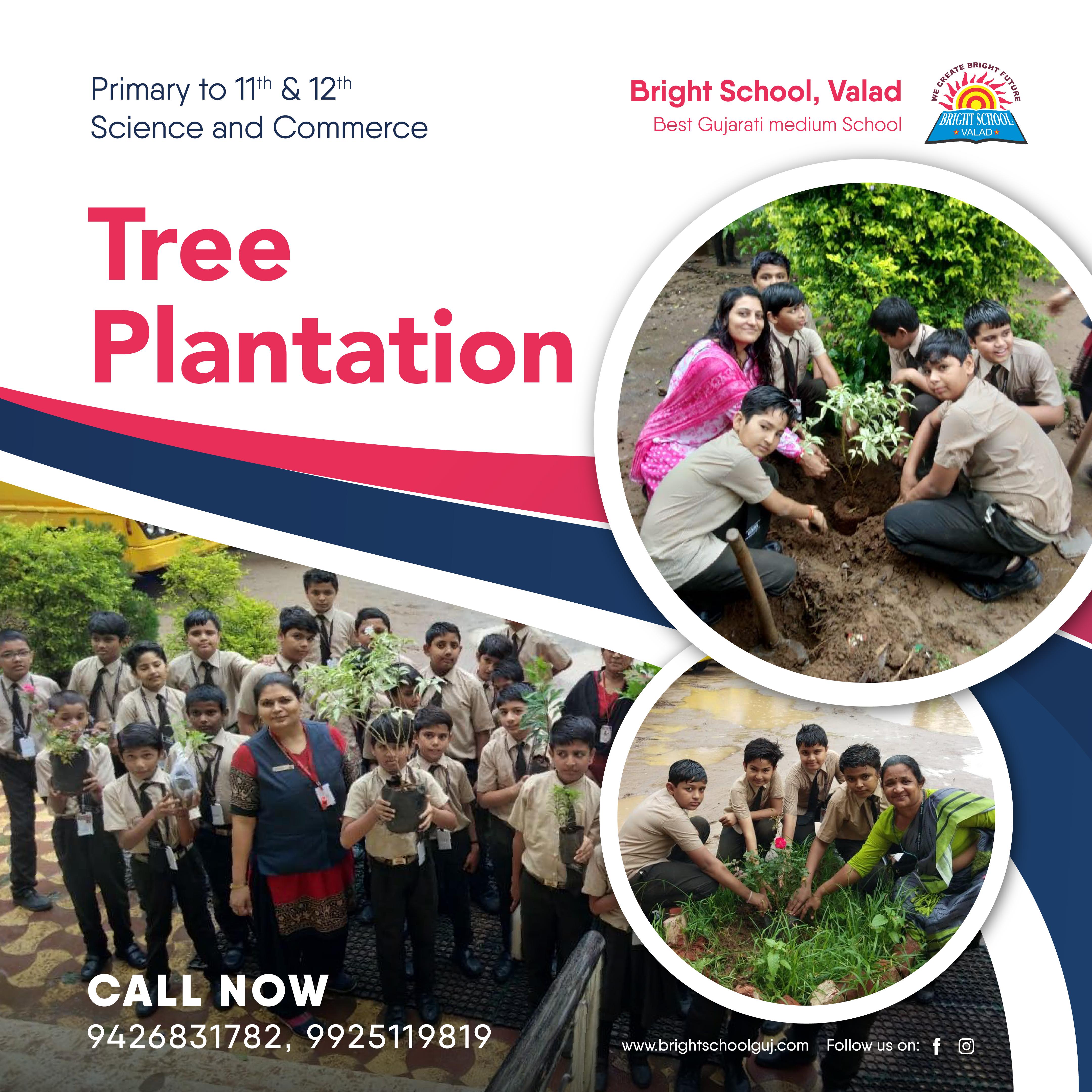 brighttreeplantation1schoolvalad