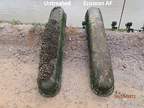 biocide-free anti-fouling solutions