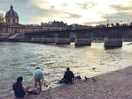Pigeon Love on the Seine