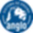 Logo anglo cnsg.png