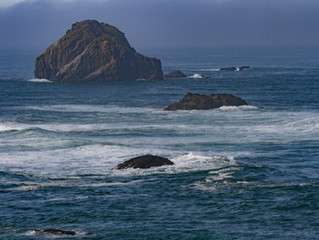 Oregon Coast and the Redwoods of Northern California