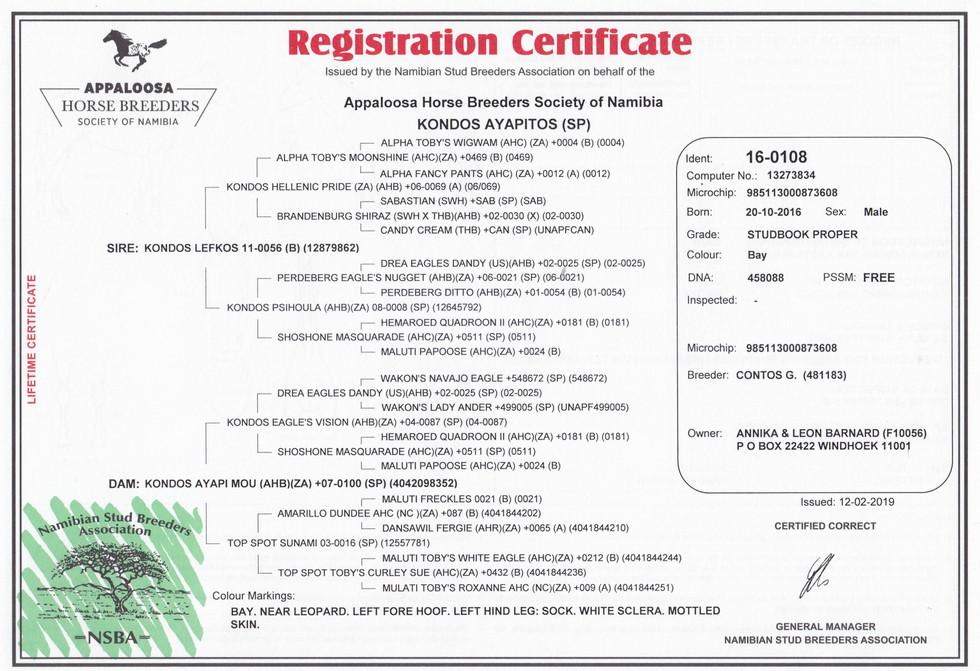 Kondos Ayapitos AHBSN Certificate (Namibia)