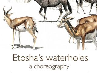 upcoming solo exhibition in windhoek