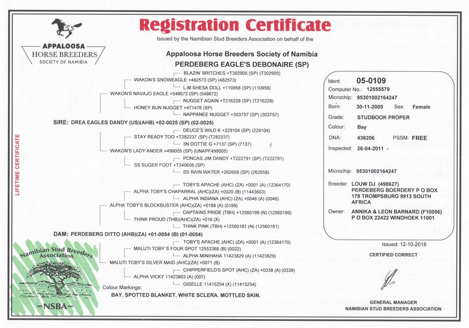 Perdeberg Eagle's Debonaire AHBSN Certificate (Namibia)