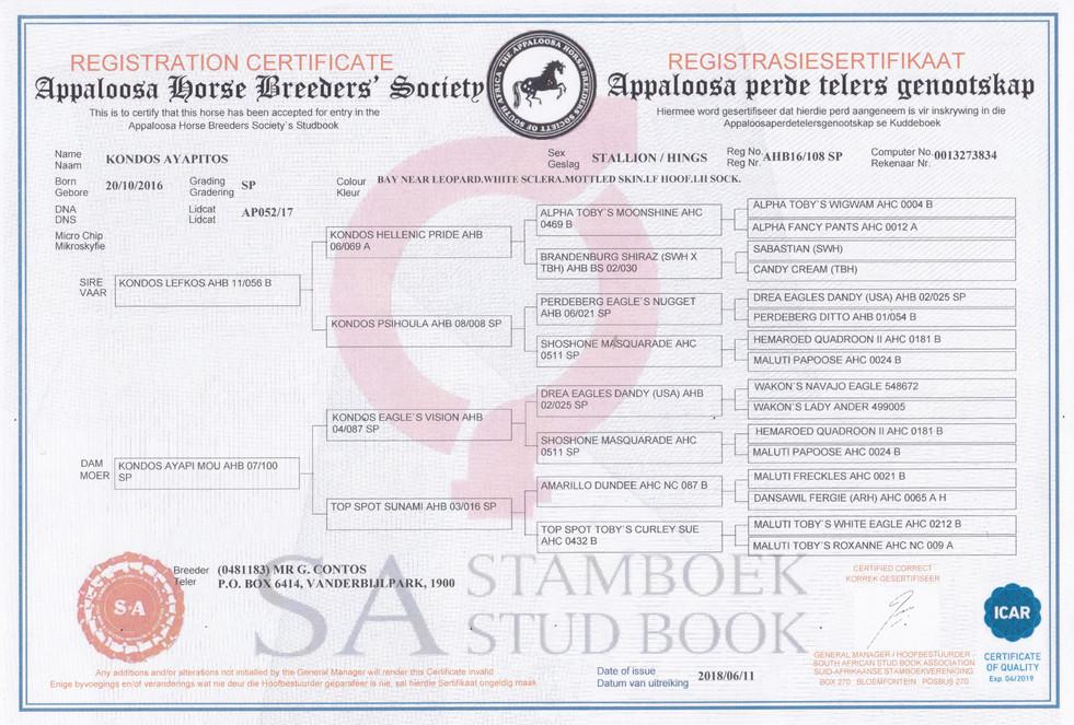 Kondos Ayapitos AHBSSA Certificate (SA)