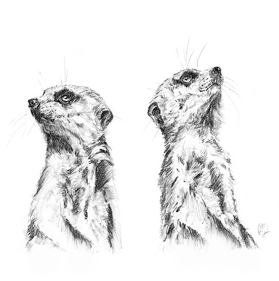 """Little Hunters"" - Greeting Card single - Meerkat"