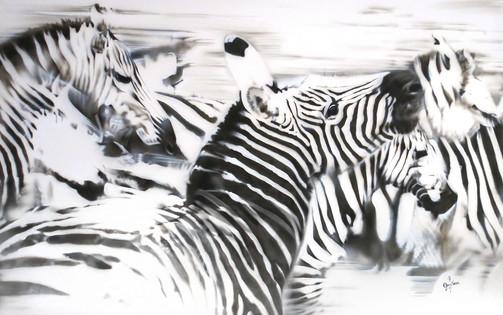 Zebras in Motion