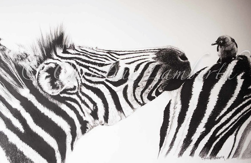 """The Curious"" - Fine Art Print - by Cristine Lamberth - South Africa"