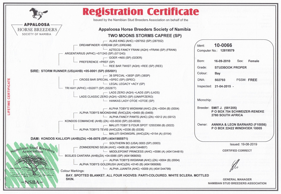 Two Moons Storms Capree AHBSN Certificate (Namibia)