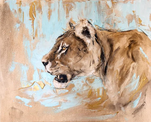 Lioness in blue