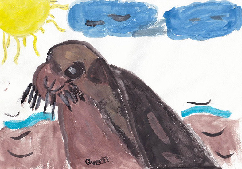 """""""cape fur seal"""" - by Queen - Namibia"""