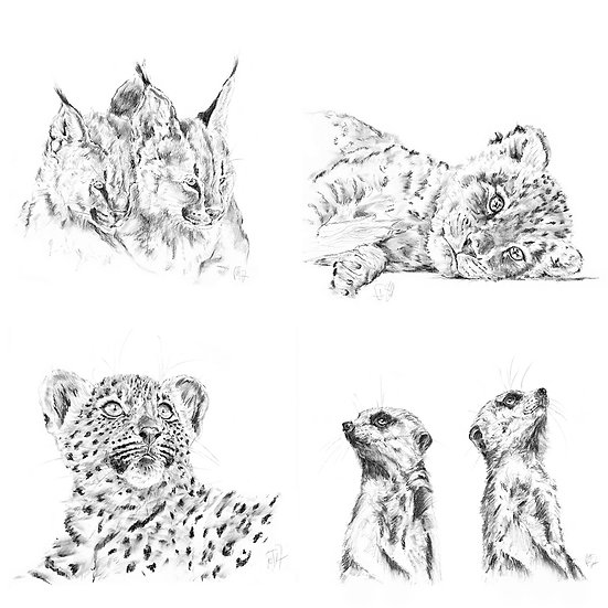 """Little Hunters"" - Greeting Cards Set 4"