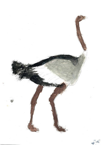 """""""ostrich - by - Namibia"""