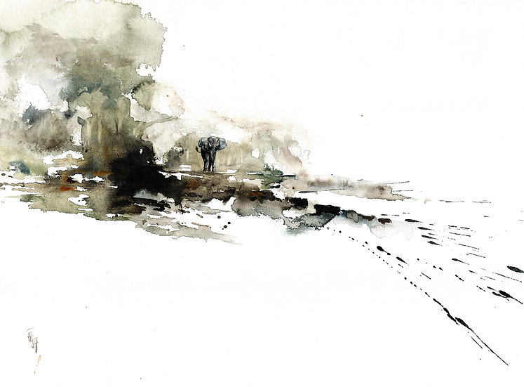 """catching wind"" - original watercolour sketch"