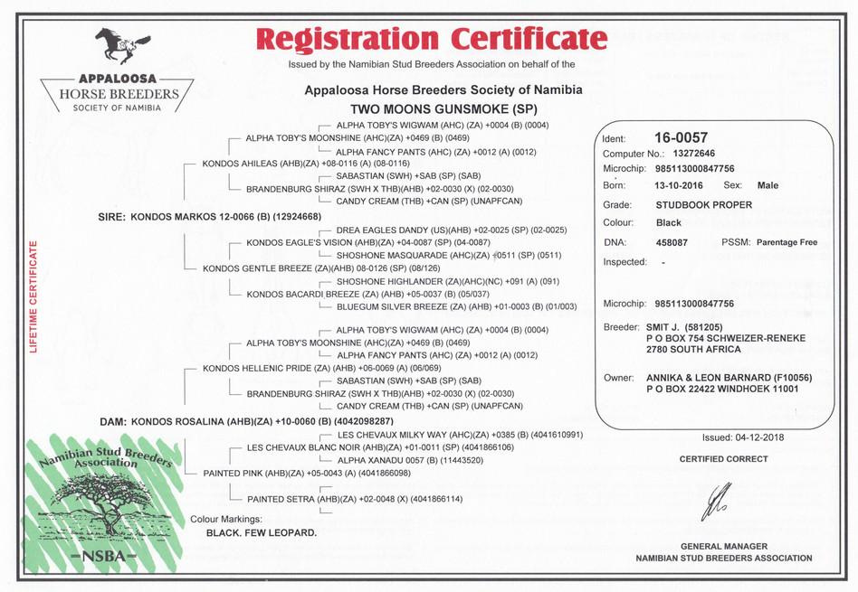Two Moons Gunsmoke AHBSN Certificate (Namibia)