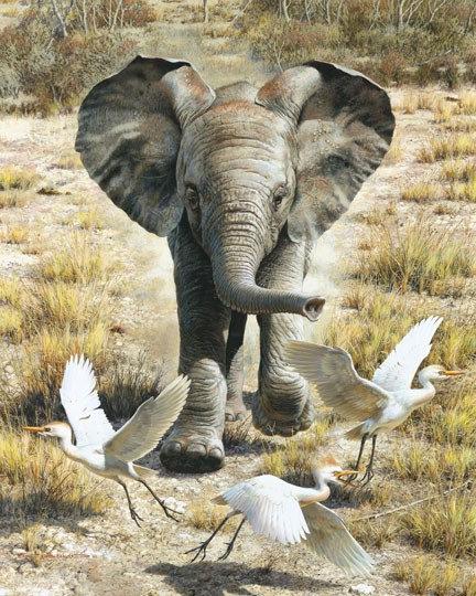 """Flushing Egrets"" - Fine Art Print by Carl Brenders - Belgium"