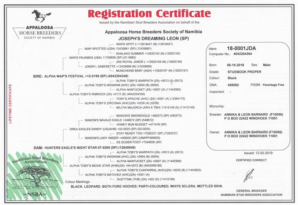 Joseph's Dreaming Leon AHBSN Certifictae (Namibia)