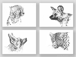 """eyes of the wild"" print series"