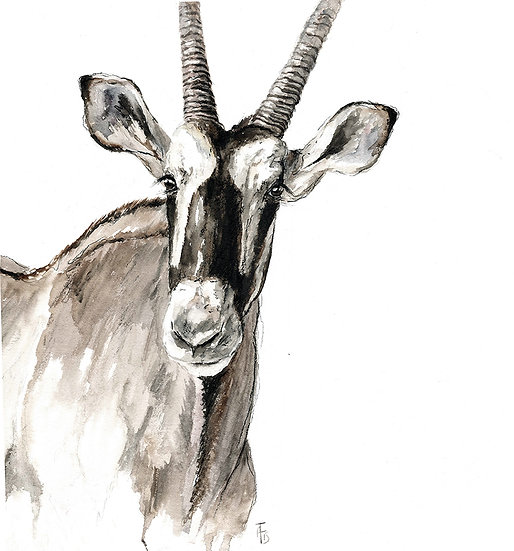 """""""the oryx lady"""" - original watercolour painting"""