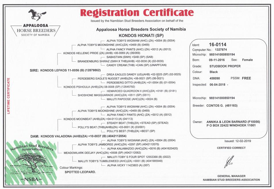 Kondos Hionati AHBSN Certificate (Namibia)