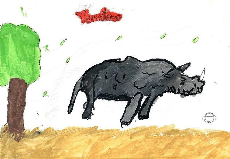 """rhino"" - by Tonateni - Namibia"