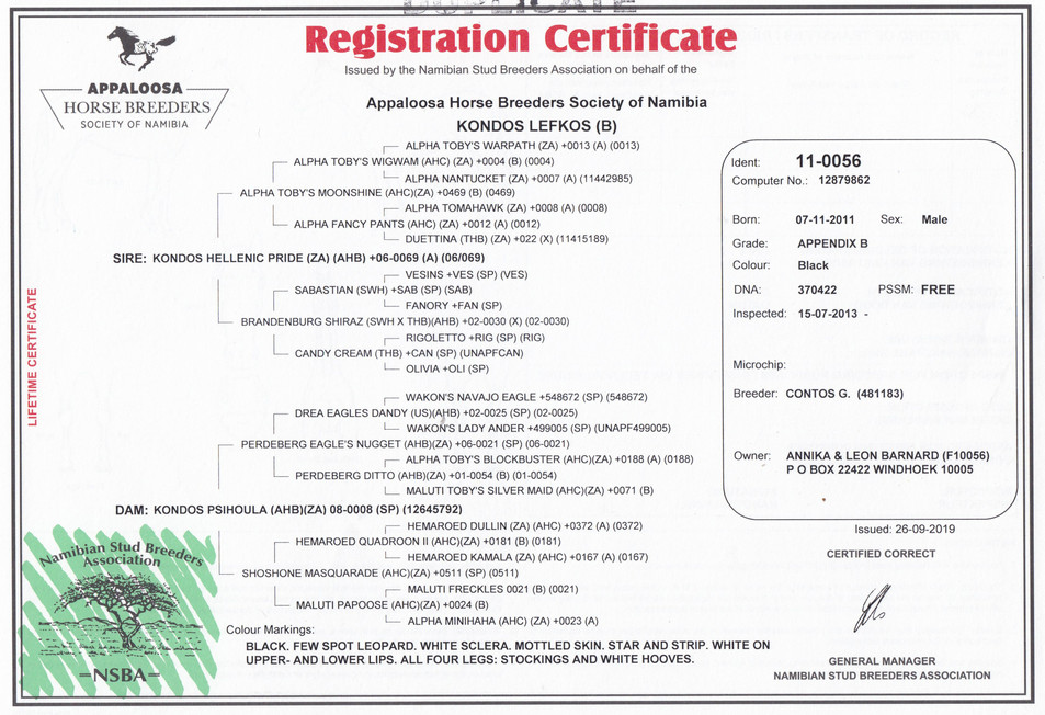 Kondos Lefkos AHBSN Certificate (Namibia)