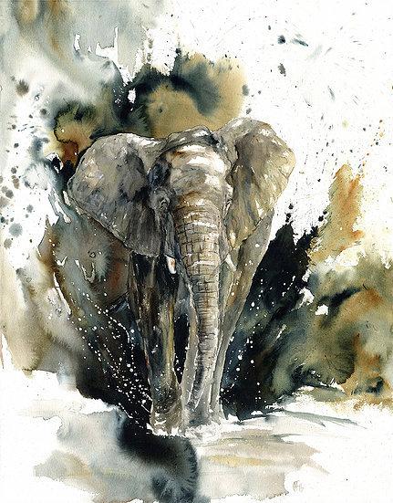 """Busanga"" - original watercolour painting - by Annika Funke (Namibia)"